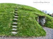 Drogheda19