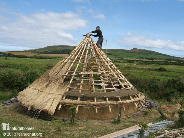 Building a celtic roundhouse christy jackson nicholas author and artist - Houses made from natural materials ...