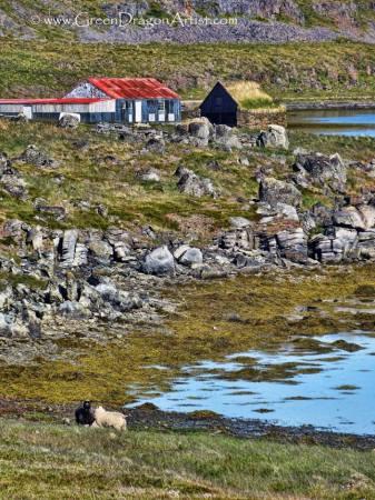 Westfjords25