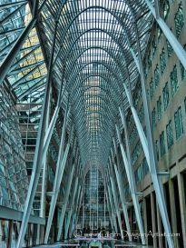 c Toronto1